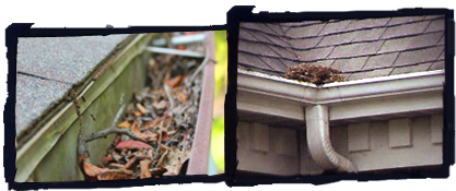 Yards By Us - Potential problems from clogged gutters.
