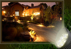 Yards By Us - Landscape Lighting for walkways and uplighting on trees