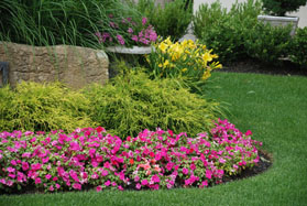 Plant Bed Care by Yards by Us
